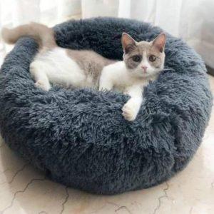 Comfort Calming Pet Bed - PetCareSunday