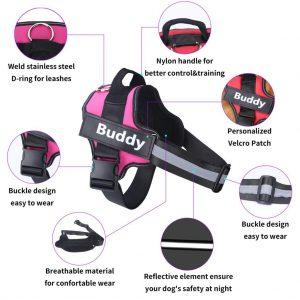Personalized Dog Harness - PetCareSunday