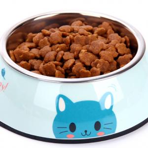 Print Pattern Food Bowl - PetCareSunday