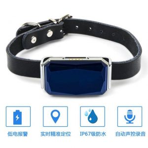 Pet Smart GPS Tracker Collar - PetCareSunday