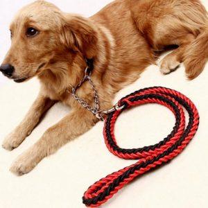 Braided Traction Rope Dog Leash - PetCareSunday