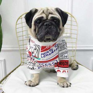 Dog Cotton Print Sweater - PetCareSunday