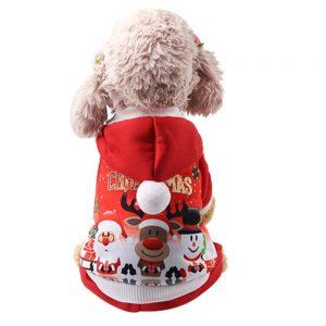 Comfortable Christmas Hoodied Sweatshirts - PetCareSunday