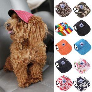 Dog Baseball Cap - PetCareSunday